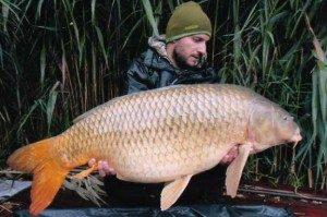 2012-szeptember-193-kg.-300x199