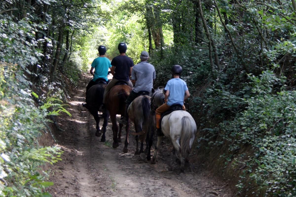 Paardrijden...